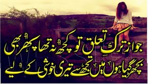 best two lines sad urdu shayari