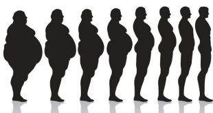 how to lose weight in urdu