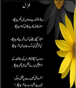 poetry of parveen shakir