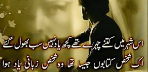 sad urdu shayari 2 lines