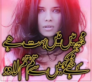 urdu sad shayari two lines