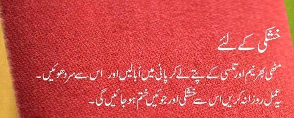Zubaida tariq totkay zubaida apa k totky for hair in urdu zubaida apa k totkay for hair in urdu ccuart Image collections