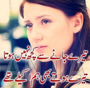 sad shayari in two lines