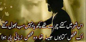 sad urdu shayari 2 lines