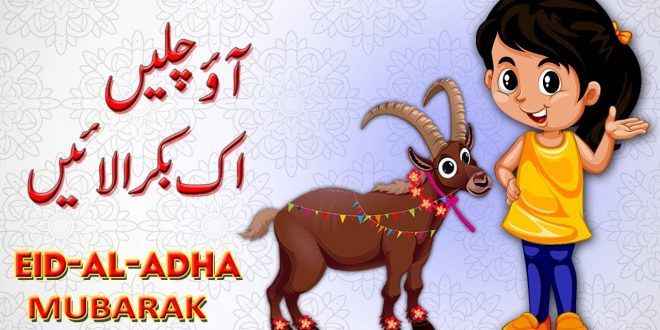 Eid ul Azha 2019